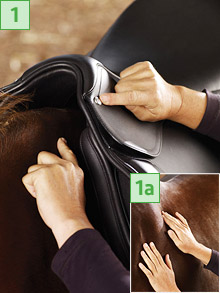 Mark a reference point on your horse with chalk